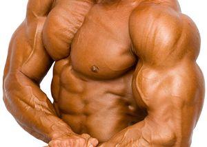 f039_01_biceps.jpg